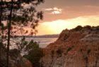 View of the surrounding environment near Epic Sana