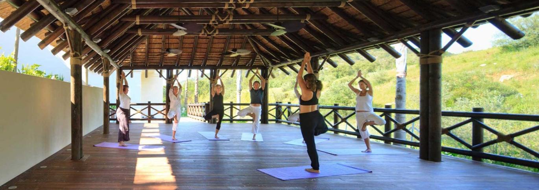 A yoga class in progress in the pavillion at Shanti Som
